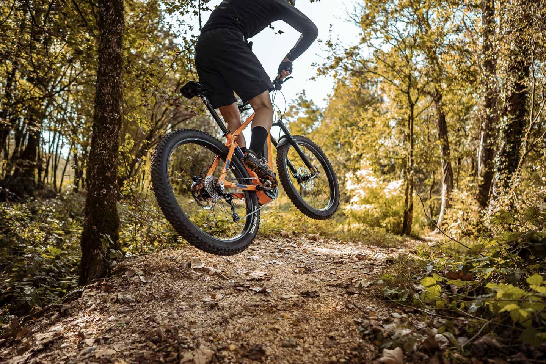 bikel.site.compact-11-2